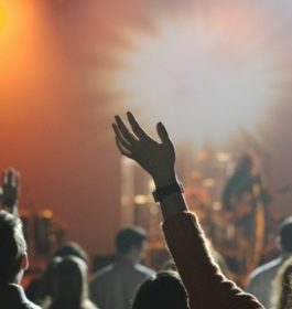 Concerts / festivals